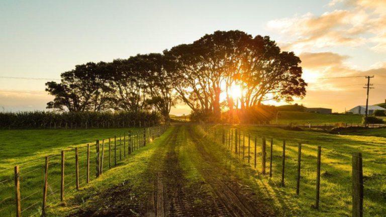おすすめの空いている海外サーフトリップ先!ニュージーランドを知ろう