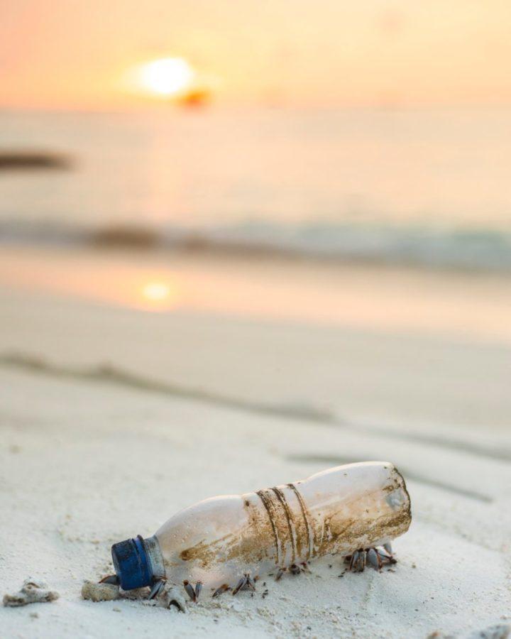 プラスチックポイ捨てに関してのサーファーの意見