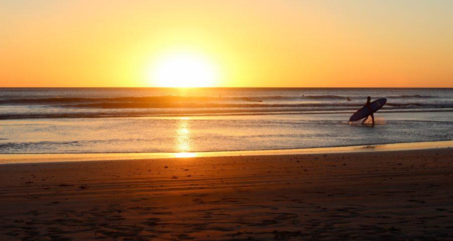 ニュージーランド、ワイヒビーチでサーフィン