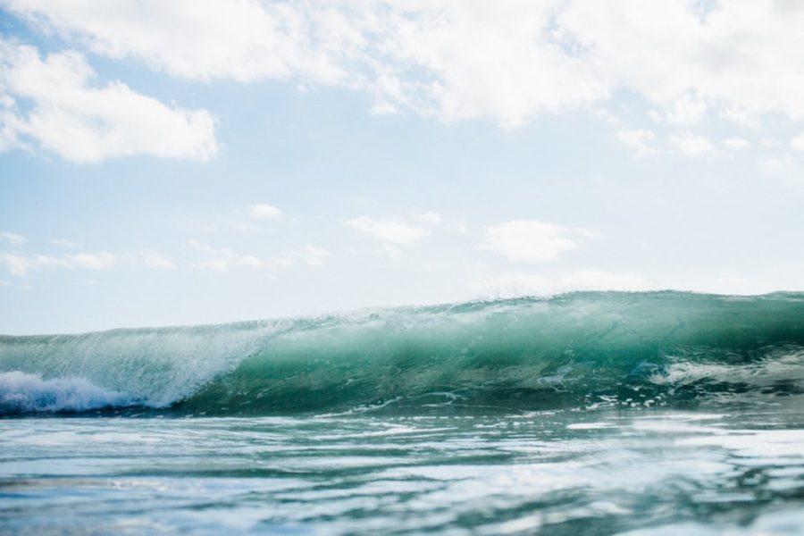 ニュージーランドでサーフィン・ラグランでバレルをゲットしよう